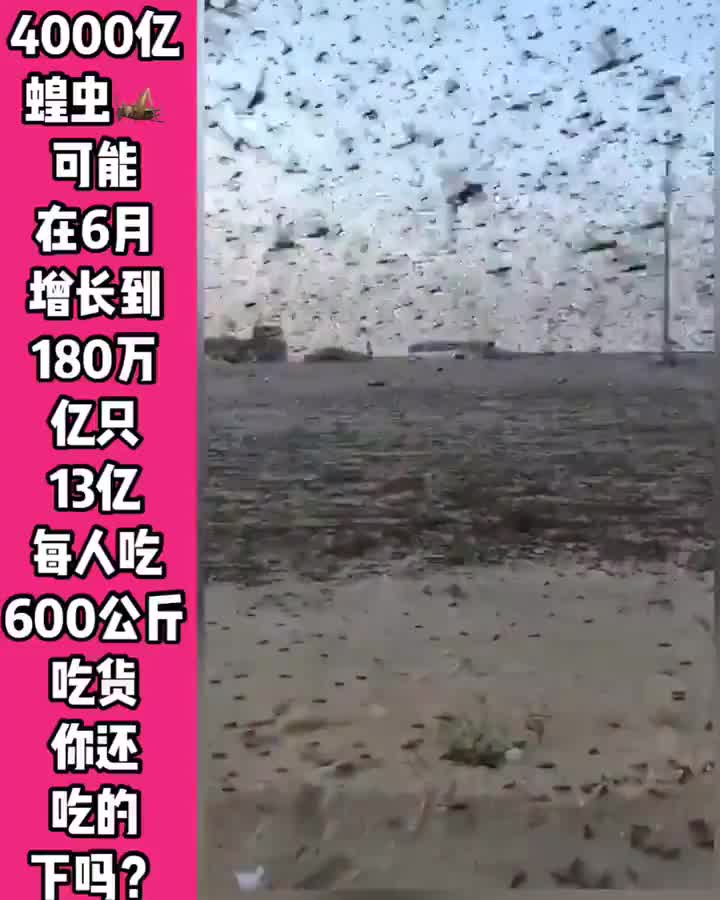 Life in China 2020